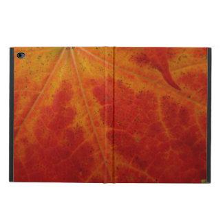 Röd fotografi för natur för lönnlövabstrakthöst powis iPad air 2 skal