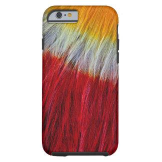 Röd gådd mot Toucan fjäderabstrakt Tough iPhone 6 Case
