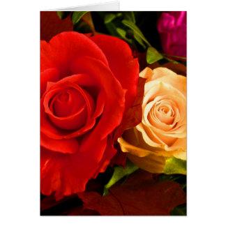 Röd gul ros