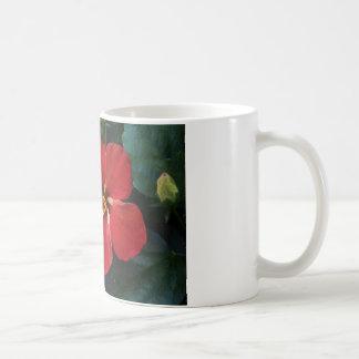 Röd hibiskus kaffemugg