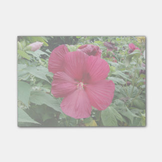 Röd hibiskus post-it lappar