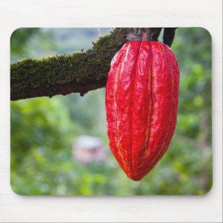 röd kakaopod mus matta