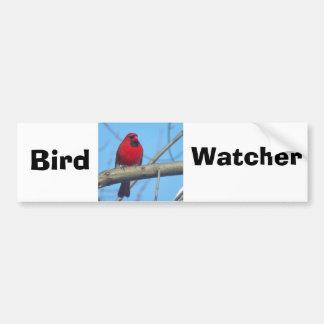 Röd kardinal/fågel bildekal