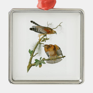 Röd-knuffade hökJohn Audubon fåglar av Amerika Silverfärgad Fyrkantigt Julgransprydnad