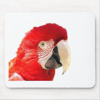 Röd macaw musmatta