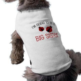 Röd nyckelpigastorasyster som är långärmad hundtöja