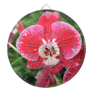Röd Orchidblommar Darttavla