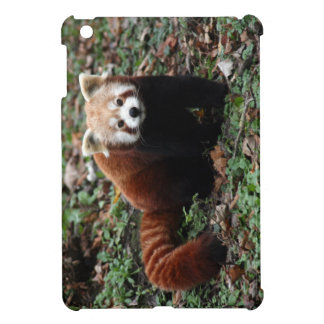 Röd panda iPad mini mobil skal