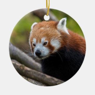 Röd Panda Julgransprydnad Keramik