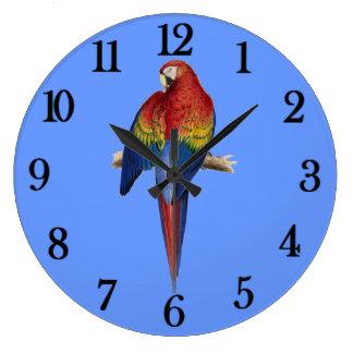 Röd papegojablåttbakgrund stor klocka