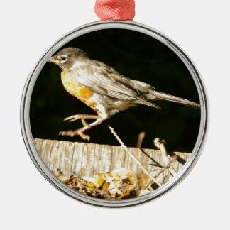Röd Robin spole Julgransprydnad Metall