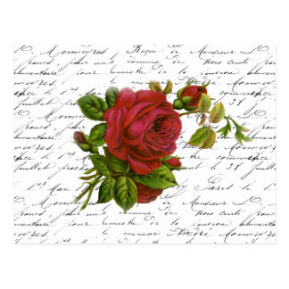 Röd ros för typografi för svart vit för vintage vykort