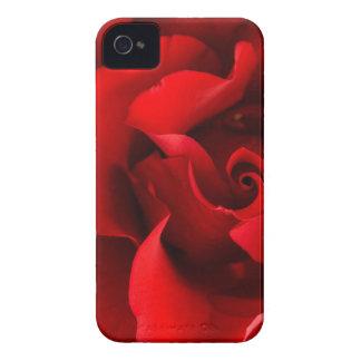 Röd ros med dagg tappar på den skräddarsy iPhone 4 Case-Mate case