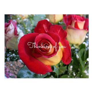 Röd ros som är tänkande av dig beställnings- vykort