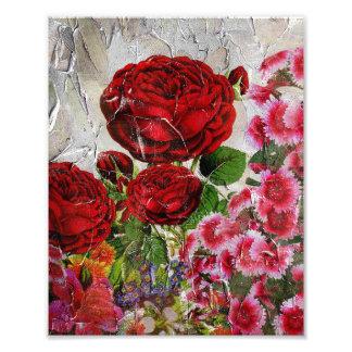 Röd rosblomsterträdgård fototryck