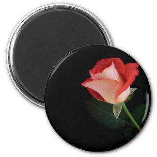 Röd roskylmagnet magnet rund 5.7 cm