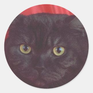 RÖD svart katt - Runt Klistermärke