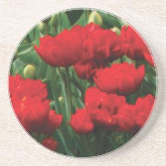 röda blommor i fält underlägg sandsten