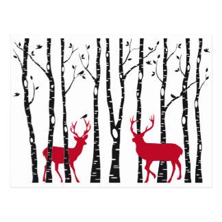 Röda deers i björkträdskog vykort