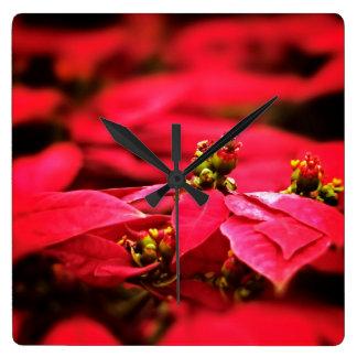 Röda julstjärnablommor fyrkantig klocka