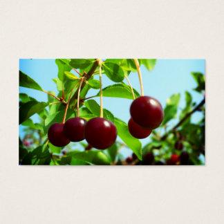 Röda körsbär - tillfoga ditt egna handlag visitkort