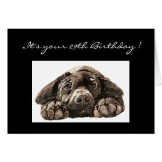 Rolig 29th födelsedag, Labrador Retriever Hälsningskort