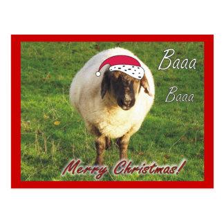 Rolig fårjulvykort vykort