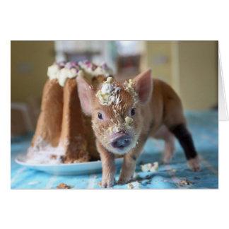 Rolig gris och tårtan OBS kort