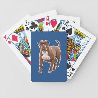 Rolig groptjur i exponeringsglas spelkort