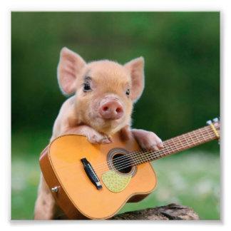 Rolig gullig gris som leker gitarren fototryck