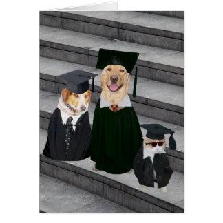 Rolig gullig hundstudenten kort