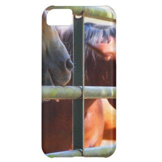Rolig häst iPhone 5C skydd