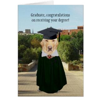 Rolig hund anpassade/labbstudenten hälsningskort