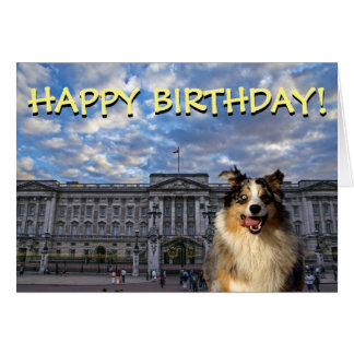 Rolig hund Buckingham Palace födelsedagkort Hälsningskort