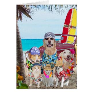 Rolig hund-/katthawaiibo/surfarefödelsedag hälsningskort