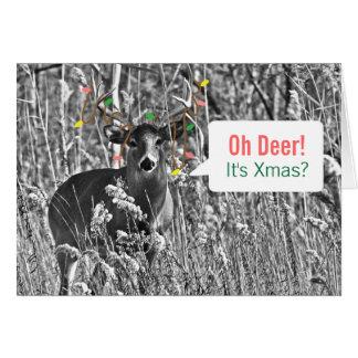 Rolig jul - hjort med julljus hälsningskort