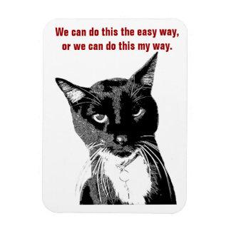 Rolig kattmagnet magnet