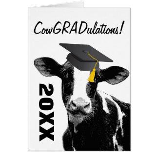 Rolig ko för grattisstudenten i lock hälsningskort