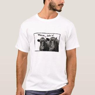 Rolig koTshirt med ordstäv Tshirts