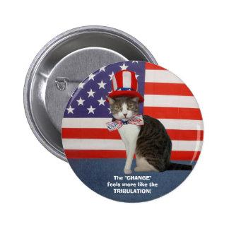 Rolig politisk katt kattunge knapp med nål