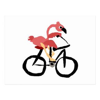 Rolig rosa Flamingofågel på cykeln Vykort