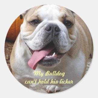 """Roliga bulldoggklistermärkear """"kan inte rymma hans runt klistermärke"""