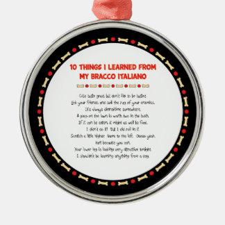 Roliga saker mig som är lärd från min Bracco Julgransprydnad Metall