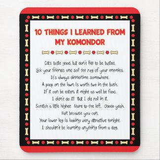 Roliga saker mig som är lärd från min Komondor Musmatta