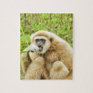 Roligt apadjur pussel