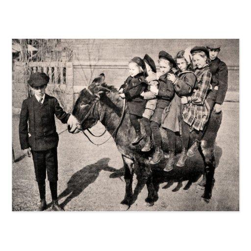 Roligt balansera för åsna för vintageporträttbarn vykort