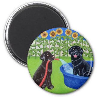 Roligt bassängparty Labradors Kylskåps Magneter