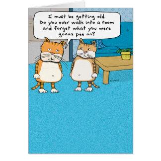 Roligt gammalt kattfödelsedagkort hälsningskort