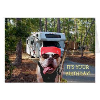 Roligt lyckligt camparefödelsedagkort hälsningskort