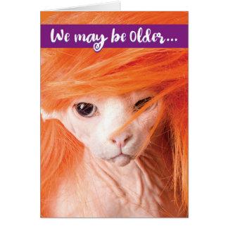 Roligt sexigt gammalt kattfödelsedagkort för äldre hälsningskort